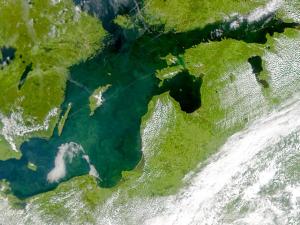 Балтийское море в период эвтрофикации