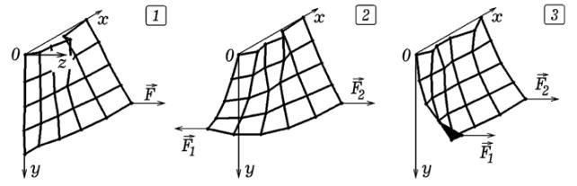Рис. 7. Деформация упругой ткани, висящей в вертикальной плоскости.
