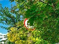 Скрытый дорожный знак