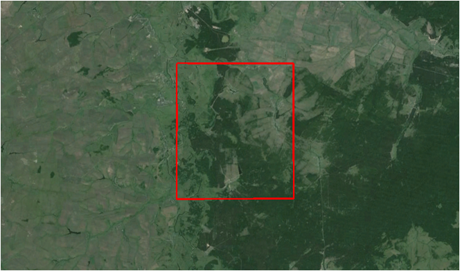 Рисунок 1. НИП «Новое Мамангино» на космическом снимке Landsat-8