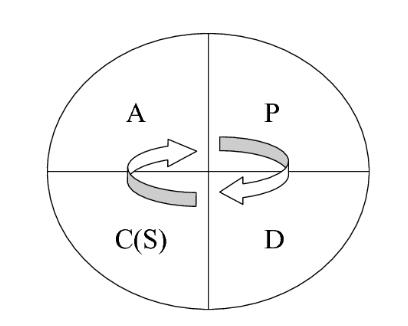 Рисунок 1 - Модель непрерывного улучшения процессов – Цикл Шухарта Деминга или цикл PDC(S)A [4]